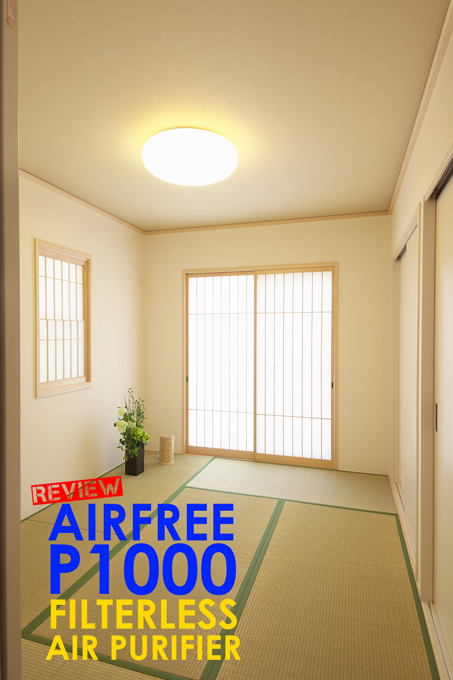 AirFree P1000 Filterless Air Purifier Review