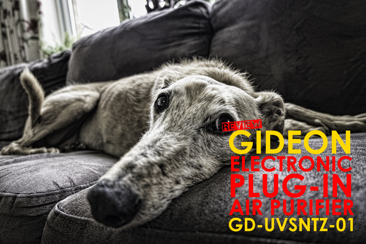 Gideon Electronic Plug-in Air Purifier Review